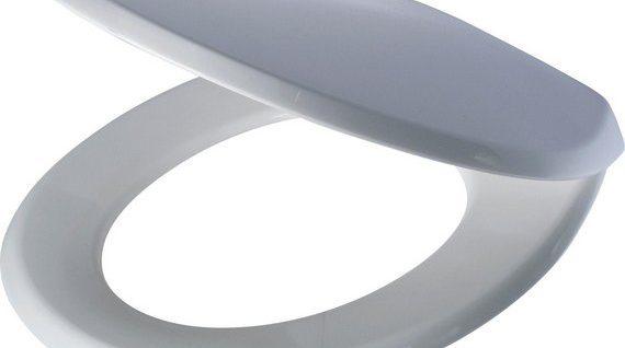 bemis toilet seat